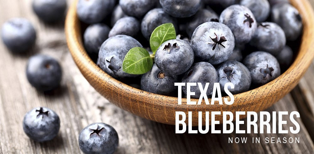 Local Texas Blueberries are in Season!