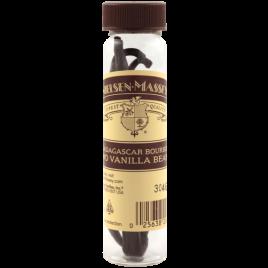 Gourmet Vanilla Bean