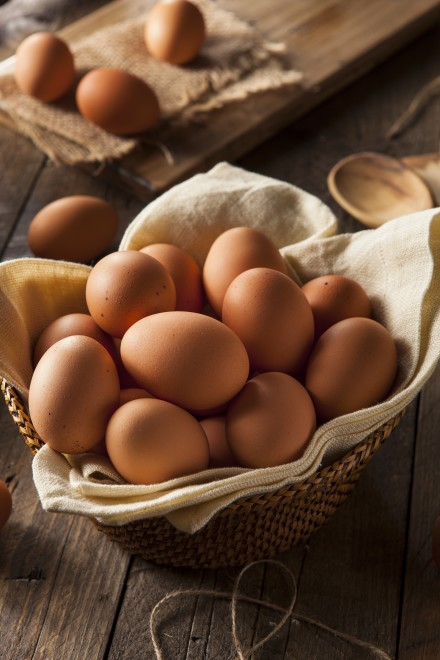 Large Eggs Pasture Raised