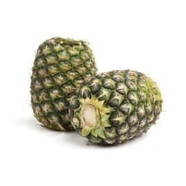 Pineapples - Crownless